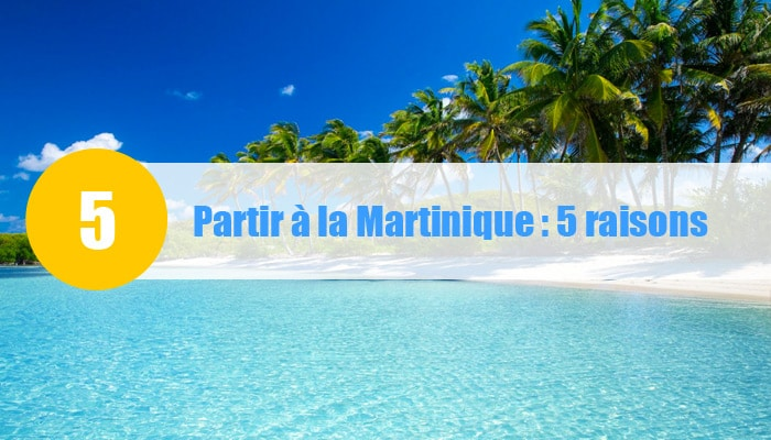 partir à la martinique